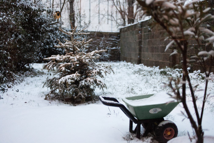 david-ferriere-photographe-rennes-neige-2013