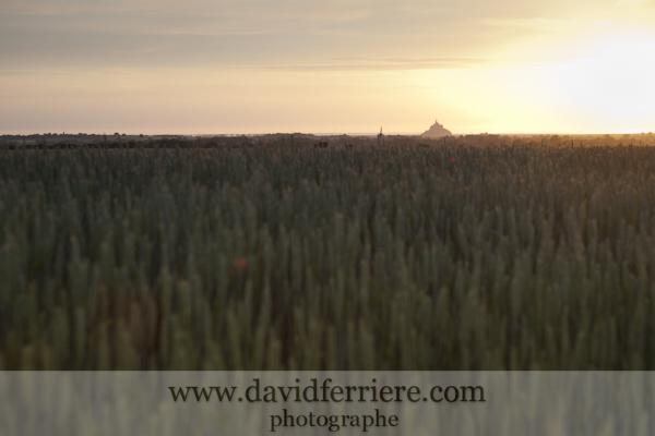 Le Mont Saint Michel dans le soleil couchant ...