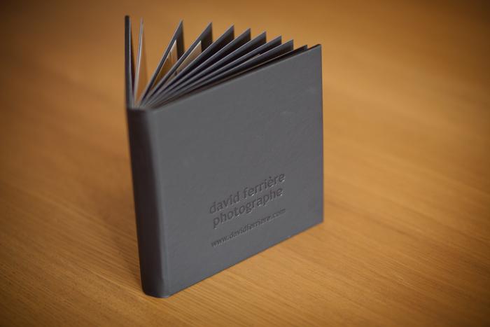 david-ferriere-photographe-2011-MiniAlbum-16x16-9