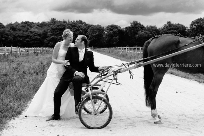 photographe mariage rennes passion chevaux