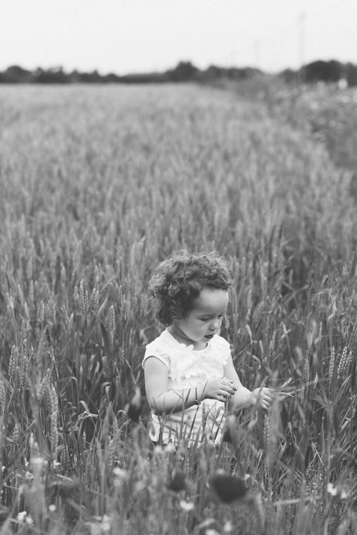 rennes photo famille portrait champ blé portrait enfant