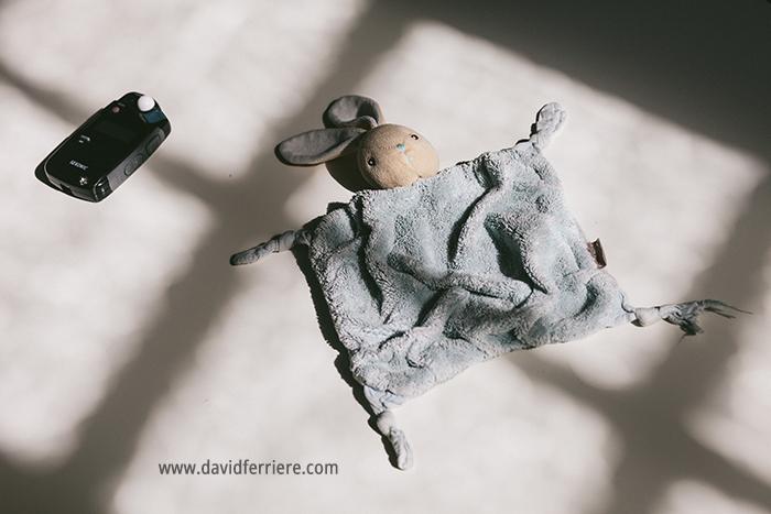 portrait doudou lapin rennes